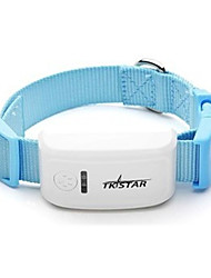 Dog GPS Collar Rechargeable / Wireless / GPS / Batteries Included Geometic Blue Plastic