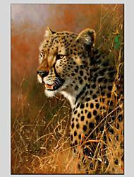 Pintados à mão Abstrato Animal Pinturas Óleo Prints +,Clássico Moderno 1 Painel Tela Pintura a Óleo For Decoração para casa