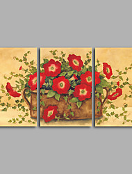 Canvas Set / Unframed Canvas Print Still Life  Morning glory / Floral/Botanical ClassicThree Panels Horizontal Print Wall Decor For Home Decoration
