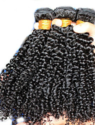Peruvian Kinky Curly Virgin Hair Queen Hair Products 3Pcs,Peruvian Curly Virgin Hair Human Hair Extensions Weave Bundles