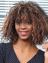 Inclined Bang Afro Curly Colormix Synthetic Wig