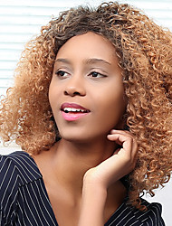 Side Parting Afro Curly Colormix Synthetic Wig