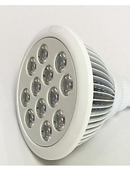 24W E26/E27 LED Grow Lights 24 Red Blue High Power LED 1200-1600 lm  AC85-265 V 1 pcs