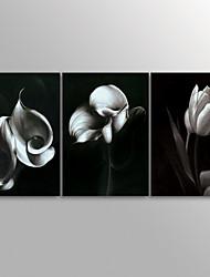 canvas Set Impressão em tela sem moldura Vida Imóvel Moderno,3 Painéis Tela Horizontal Impressão artística Decoração de Parede For