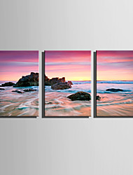 E-HOME Stretched Canvas Art Reef on The Beach Decoration Painting Set Of 3