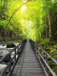 JAMMORY Art DecoWallpaper For Home Wall Covering Canvas Adhesive required Mural Green Forest Passage XL XXL XXXL