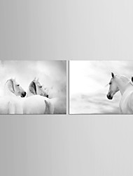 Canvas Set Abstract Animal Classic European Style,Two Panels Canvas Horizontal Print Wall Decor For Home Decoration
