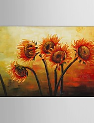 Handpainted oil Paintings Flower Wall Art Home Decor Stretchered Frame Ready to Hang