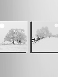 E-HOME Stretched Canvas Art Snow Covered Tree Decoration Painting One Pcs