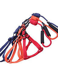 Chien Laisses Ajustable/Réglable Solide Rouge Noir Bleu Violet Orange Nylon Tissu