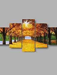 HD Print Golden Road scenery Painting Wall Art 5pcs/set Home Decor (No Frame)