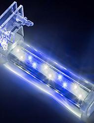 Aquarium Aquarium Decoration White Blue Non-toxic & Tasteless LED Lamp 220V