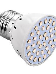 YWXLight® E27 36LED 2835SMD 3W 250Lm Red-Blue Led Grow Lamps Plant Growth Light  (AC 220V/110V)