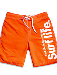 Sommer Orange schnell loost