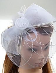 Tulle Feather Net Headpiece-Wedding Special Occasion Fascinators Hats Birdcage Veils 1 Piece