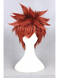 Short Fate/stay night Wig Shirou Emiya Wine Red Synthetic 14inch Anime Cosplay Hair Wig CS-216D