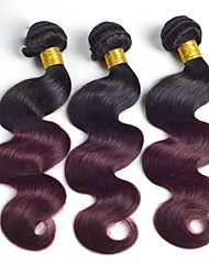 Ombre Hair Bundles Peruvian Virgin Hair Body Wave Bundles Ombre Human Hair Weave Two Tone 1b/99j Ombre Peruvian Hair