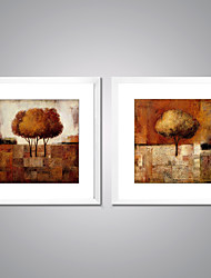 Framed Print Abstract Floral/Botanical Traditional European Style,Two Panels Canvas Square Print Wall Decor For Home Decoration