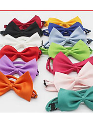 gravata borboleta cão
