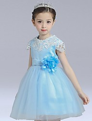 Ball Gown Short / Mini Flower Girl Dress - Organza Short Sleeve Jewel with Flower(s) Lace Pearl Detailing
