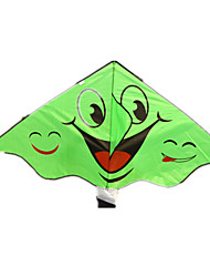 Kites Triangle Outdoor Fun & Sports Novelty Cloth Polycarbonate Unisex