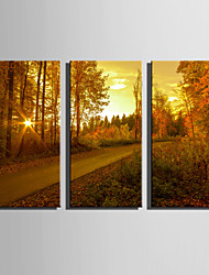 E-HOME Stretched Canvas Art Dusk Under The Road Decoration Painting Set Of 3