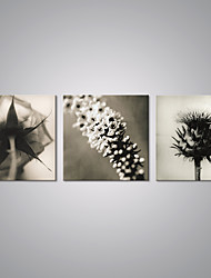 Stretched Canvas Print Flower Picture Print on Canvas Modern Still Life Artwork for Wall Decoration