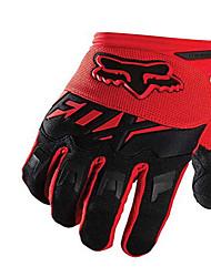 La moto hors-route de renard sur toute la route se réfère aux gants de conduite de vélo aux gants extérieurs