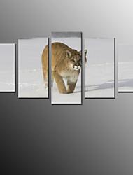 Imprimante à tirage photographique moderne, cinq panneaux toile en forme d'impression décoration murale pour la décoration de la maison