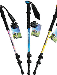 3 Nordic Walking Poles 135cm (53 Inches) Damping Foldable Light Weight Adjustable Fit Carbon Fiber Camping & Hiking Snowshoeing Traveling