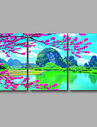Stretched Canvas Print Three Panels Canvas Wall Decor Home Decoration Abstract Modern Pink Blossom