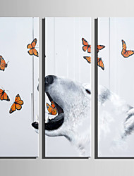E-HOME Stretched Canvas Art Polar Bears And Butterflies Horse Decoration Painting Set Of 3