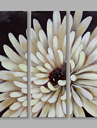 Abstract Oil Painting The Beige Chrysanthemum Framed Handmade Oil Painting For Home Decoration