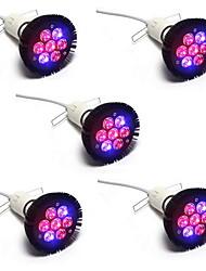 21W E26/E27 Luci LED per la coltivazione PAR38 7 LED ad alta intesità 1120 lm Rosso Blu V 5 pezzi