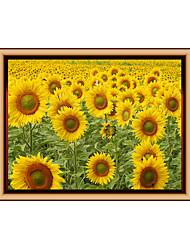 Květiny a rostliny Komiks Módní Samolepky na zeď Samolepky na stěnu 3D samolepky na zeď Ozdobné samolepky na zeď,Vinyl MateriálHome