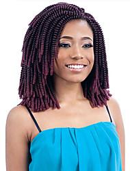 Crochet Curly Curly Braids Hair Extensions Kanekalon Hair Braids
