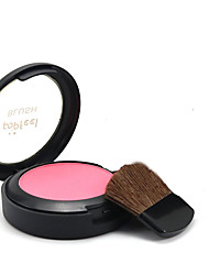 Blush Makeup Make Up With A Mirror Blush Brush Three In One