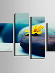 E-HOME Stretched Canvas Art The Flowers On The Stone Decoration Painting Set Of 4