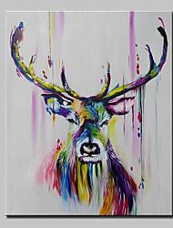 Pintada a mano Animal Vertical,Abstracto Modern Un Panel Lienzos Pintura al óleo pintada a colgar For Decoración hogareña