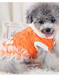 Cachorro Vestidos Roupas para Cães Casual Rendas Branco Laranja