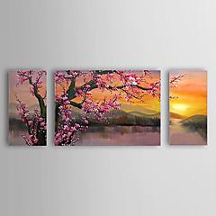 Handgeschilderde Bloemenmotief/BotanischKlassiek / Traditioneel Drie panelen Canvas Hang-geschilderd olieverfschilderij For Huisdecoratie