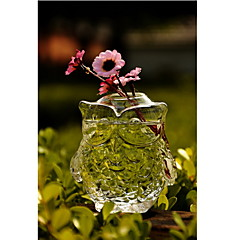 Table Centerpieces Owl Shaped Glass Vase  Table Deocrations