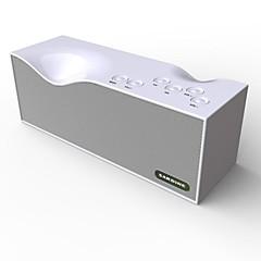 Outdoor Speaker 2.0 channel Wireless Portable Bluetooth Outdoor Indoor