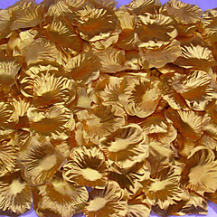 Rose Petals (100pcs/Pack)