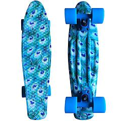 Skates padrão PP (Polipropileno) Estampa Animal