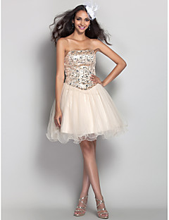 Homecoming Prom/Homecoming/Cocktail Party/Holiday Dress - Champagne Plus Sizes A-line/Princess Strapless Short/Mini Tulle