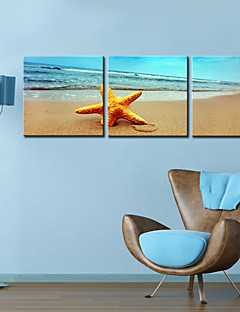 Stretched Canvas Print Art Landscape Sandbeach Set of 3