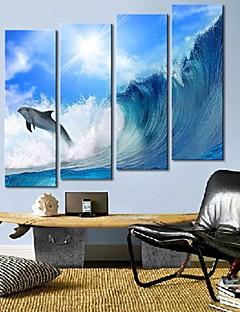 Toiles d'art les vagues et les dauphins Ensemble de 4