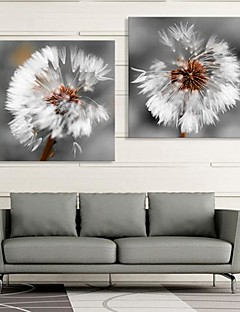 Stretched Canvas Art The Dandelion Set of 2