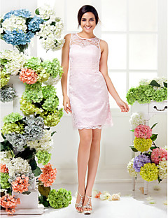 Lanting Knee-length Lace Bridesmaid Dress - Blushing Pink Plus Sizes / Petite Sheath/Column Jewel